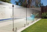 Balkon-Glasbalustrade-Edelstahl-Zapfen-Swimmingpool-Glasgeländer