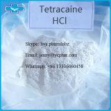 Hot Sale anesthésique local tétracaïne avec garantie de livraison