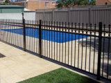 Jardin en acier décoratif clôturant avec la qualité