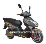 الصين رفاهية [2000ويث1500ويث1000و] [ليثييوم] بطارية درّاجة ناريّة كهربائيّة (نسر جديدة)