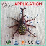 Pin entier d'insecte d'acier inoxydable d'argent de tête de résine de la vente 40mm pour l'usage de laboratoire