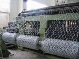 """1/4の""""工場からの電流を通された六角形の鶏の網"""