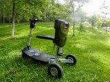 よい価格および品質の最も新しい方法電気折るスクーター、ゴルフスクーター