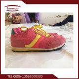 ピンクのスポーツによって使用される靴