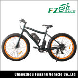 Fabricante Ebike Barato, Neumático Gordo de la Nieve Bicicleta Eléctrica