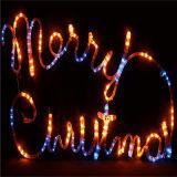 Het Licht van het LEIDENE Motief van de Straat voor het Project van Kerstmis, de Bouw