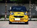 Автомобиль франтовского автомобиля высокого качества чисто электрический
