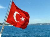 Изготовленный на заказ флаг Sunproof Турции национального флага и делает водостотьким