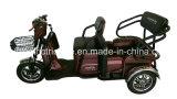 elektrischer Ladung-Passagier Trike, elektrisches Dreirad der Spannungs-48V