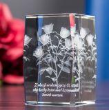 Plantas verdes para el cubo del vidrio cristalino con el grabado del laser 3D