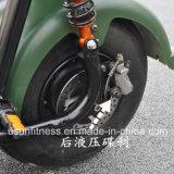 60V 1000W entfernen fetter Rad-Gummireifen den elektrischen Batterie Harley Citycoco Bewegungsroller