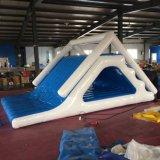 Patio divertido inflable de la pista que compite con de los cabritos del PVC