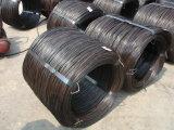 Reliure de fil de fer noir Q195 de feux de croisement sur le fil galvanisé à chaud Q195 de feux de croisement sur le fil galvanisé à chaud