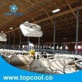 Ventilador del ciclón Vhv72-2015 para que aire de circulación refresque la vaca directo