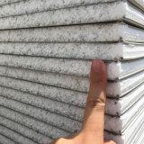 Scheda esterna della parete di panino del cemento di ENV