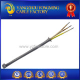 fibra de vidrio aislada mica de 600V 450deg c con el cable del blindaje del acero inoxidable