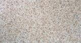 عمليّة بيع حارّ خارجيّة ريفيّ جدار قرميد ([300إكس600مّ])