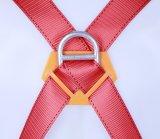 Protection libre d'automne de fréquence d'inspection de harnais d'arrestation d'automne de matériel de protection d'automne de Singapour Miller de harnais de sûreté