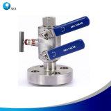 Instrument hydraulique en acier inoxydable Monoflange double bloc et la vanne de purge