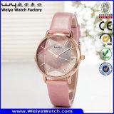 사업 합금 주문 상표 시계 ODM 가죽 시계 (WY-134B)
