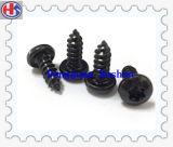 중국 제조자 (HS-DS-020)에서 까만 산화 건식 벽체 나사의 고품질
