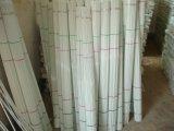 Fiberglas-Pflanzensorgfalt Rod