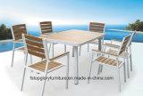 Сада мебели ротанга установленная таблица Wicker обедая (TG-166)