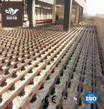 Постоянно высокое качество WPC киля для декорированных