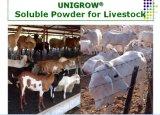 Bétail et volaille d'Unigrow encourageant la croissance