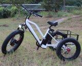 500W貨物が付いている電気スクーターの自転車