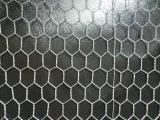 Anping-niedriger Preis galvanisierte Hexagonalchicken Korb-Draht-Filetarbeit