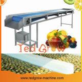 Máquina do transporte de correia para a linha de processamento da fruta e verdura