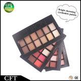 Oferta especial Shimmer brillante Mate Professional 12 colores maquillaje Eyeshadow