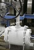 液化天然ガス低温学サービス上エントリトラニオンによって取付けられる球弁
