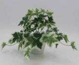El precio bajo hojas de hiedra inglesa Fabricante Artificial