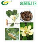 Puder des Magnolie Officinalis Auszug-98% Honokiol/Magnolol u. Soem-Service