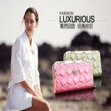 女性のための優雅な女性党方法夕方のクラッチ・バッグの財布