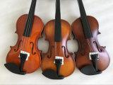 바이올린 케이스에 있는 단단한 나무 악기 학생 바이올린