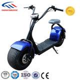 二重シート1000W Harleyの電気スクーターを使って