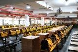 La machine la meilleur marché de filetage de la tuyauterie 3inch (SQ80D1)