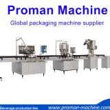 Type linéaire machine recouvrante remplissante de lavage de liquide de bouteille