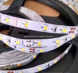 Indicatore luminoso di striscia del LED India in linea