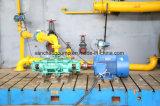 Pompe à eau à plusieurs étages à haute pression à fort débit d'évacuation d'extraction de l'eau