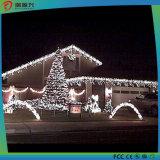 크리스마스 훈장 병원 끈 빛 요전같은 끈 빛