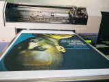 Machine van de Printer van de T-shirt van de Grootte van de hoge snelheid A3 de Digitale Flatbed