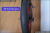 2017 성인을%s 48V 750W 뚱뚱한 타이어 전기 자전거 Ebike