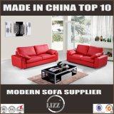 Sofà sezionale di cuoio moderno di stile del sofà di Skinn