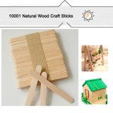 1000 bastoni di legno normali all'ingrosso del Popsicle del mestiere per i materiali di formazione e del banco
