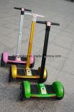 10 Zolltt-elektrischer Selbstausgleich-Roller mit 700W