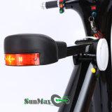 Motorino elettrico nero di colore 48V 10ah con la batteria della bici di E